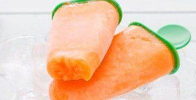 Receta de helado de zanahoria de perros