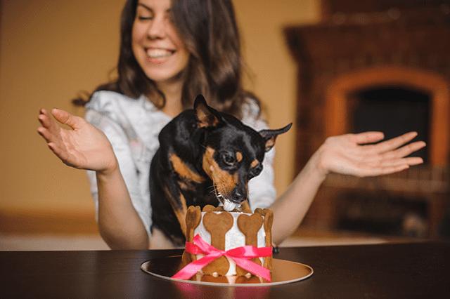 Tarta de cumpleaños para perros