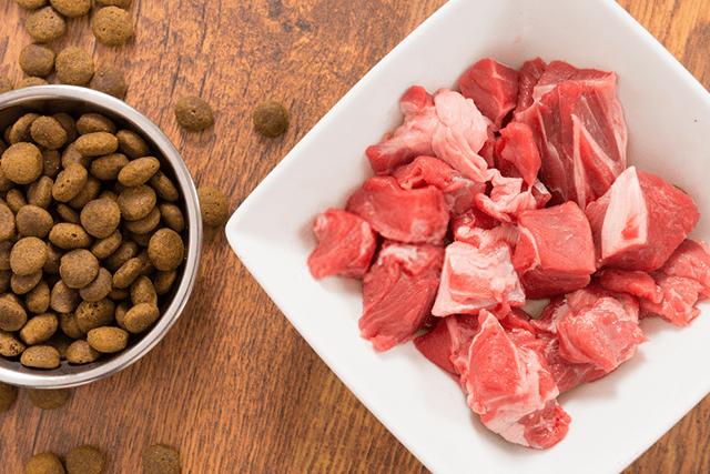 bueno y malo de las recetas caseras para perros